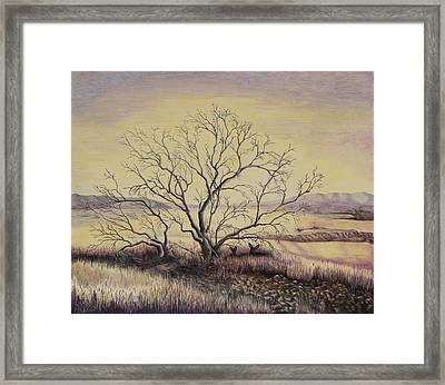 Prairie During The Dry Season Framed Print by Gina Gahagan