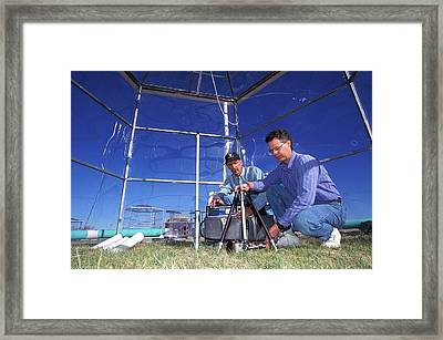 Prairie Grass Photosynthesis Research Framed Print by Scott Bauer/us Department Of Agriculture