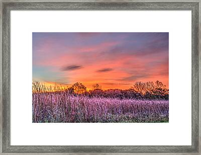 Moraine Hills State Park Moments Before Sunrise Framed Print