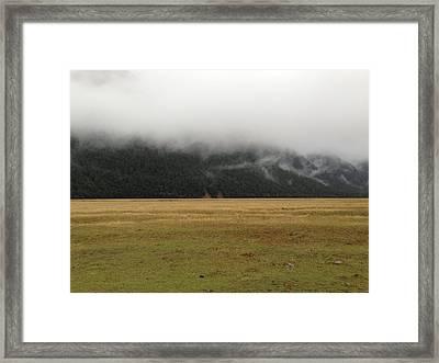 Prairie Framed Print by Ron Torborg