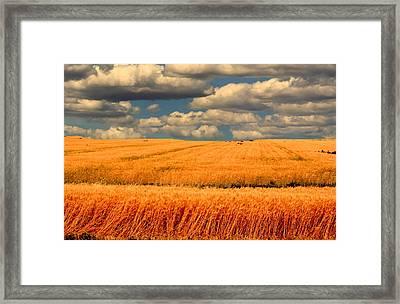Prairie Vista Framed Print