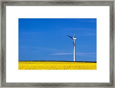 Prairie Weeds Framed Print