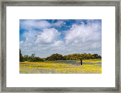 Prairies And Rolling Meadows Of Texas In Springtime - Wildflowers Blooming In Stockdale Framed Print by Silvio Ligutti