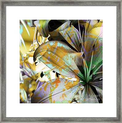 Pram II Framed Print
