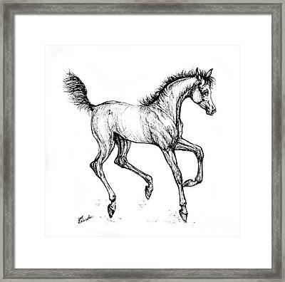 Prancing Foal Framed Print by Angel  Tarantella