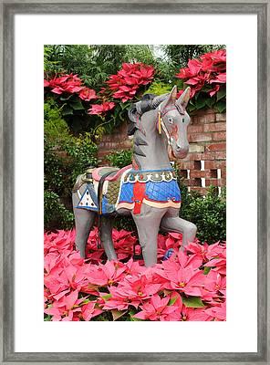 Prancing Horse Framed Print