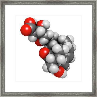 Pravastatin Cholesterol Lowering Drug Framed Print by Molekuul
