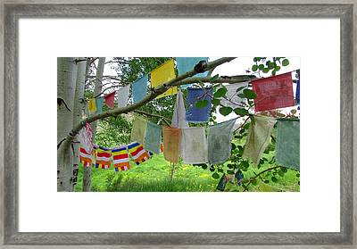 Framed Print featuring the photograph Prayer Flags And Aspen by Brenda Pressnall