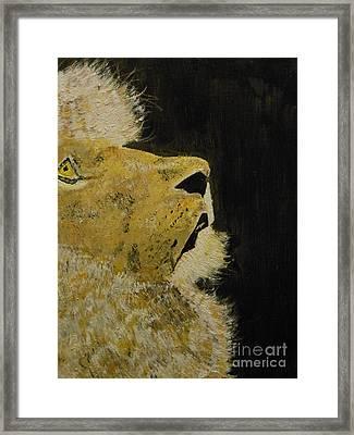 Prayer Lion Framed Print by Harold Greer
