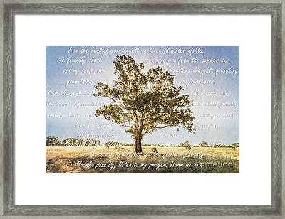Prayer Of The Woods Framed Print by Linda Lees