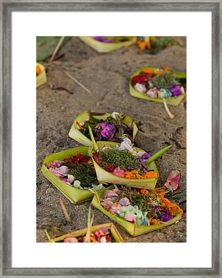 Prayer Offerings - Bali Framed Print by Matthew Onheiber
