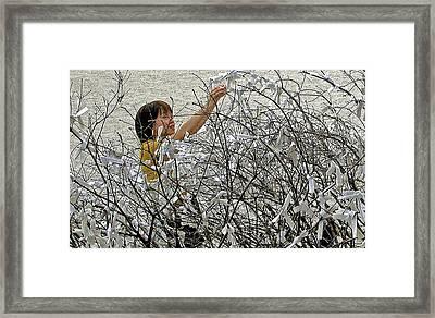 Prayer Tree Framed Print