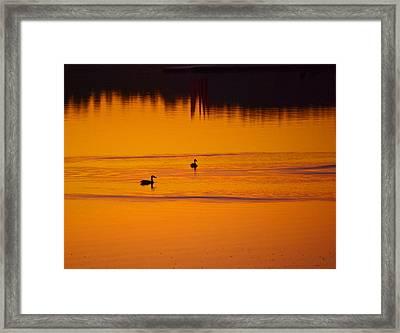 Pre Dawn Light Framed Print