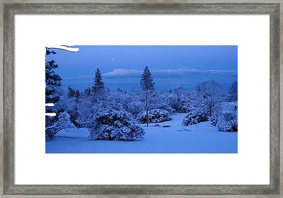 Pre-dawn Light Framed Print