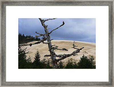 Framed Print featuring the photograph Pre Storm by Adria Trail