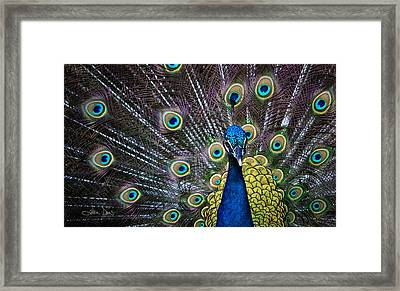 Precious Framed Print by Joan Davis