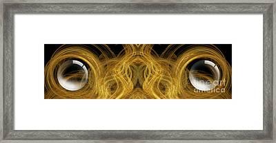 Precious Metal Frog Prince Panorama Framed Print
