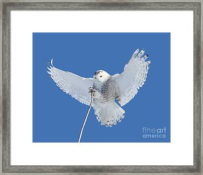 Precision Is One Of My Many Attributes Framed Print