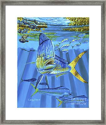 Predator Off0067 Framed Print by Carey Chen