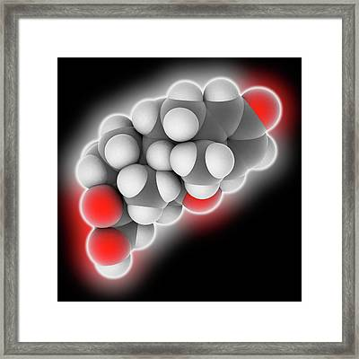 Prednisone Drug Molecule Framed Print
