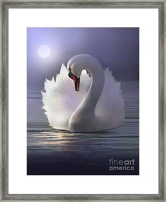 Preen Framed Print by Robert Foster