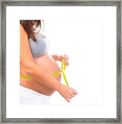 Pregnant Girl Measuring Tummy Framed Print