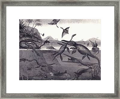 Prehistoric Animals Of The Lias Group Framed Print by English School