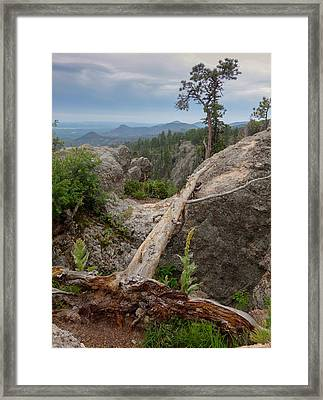 Black Hills Vista Framed Print