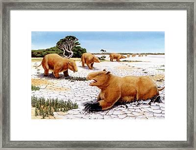 Prehistoric Giant Wombats Framed Print by Deagostini/uig