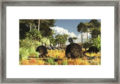 Prehistoric Glyptodonts Graze On Grassy Framed Print by Arthur Dorety
