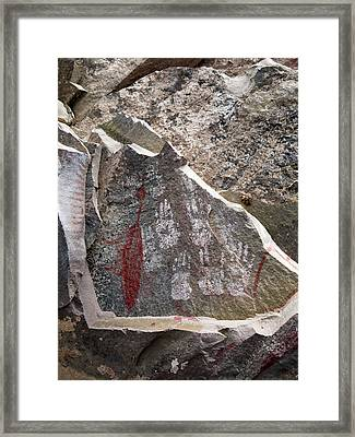 Prehistoric Painting Of A Duck Framed Print