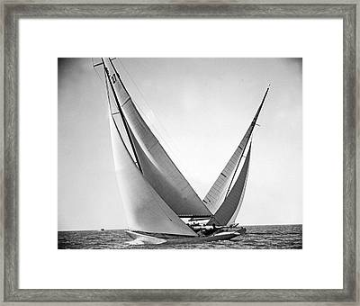 Prelude And Yucca In Regatta Framed Print by Underwood Archives
