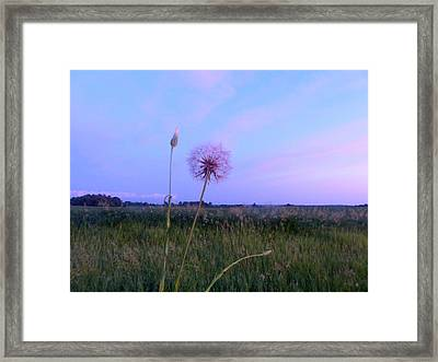 Night Of The Supermoon Framed Print