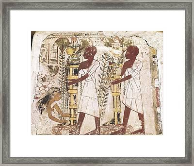 Preparation Of The Mummies Framed Print