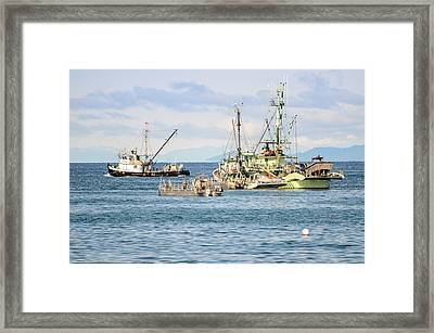 Prepared For Action Framed Print by Roxy Hurtubise
