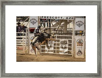 Prescott Az Rodeo Framed Print
