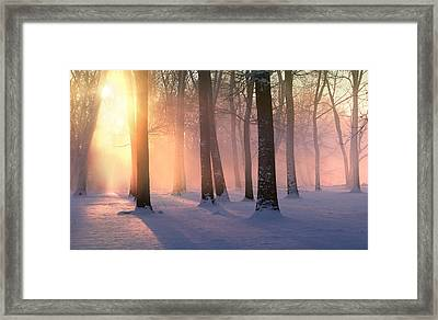 Presence Of Light Framed Print