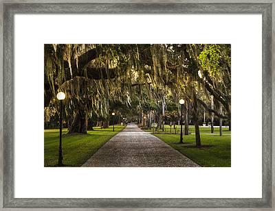 President's Path Framed Print by Debra and Dave Vanderlaan