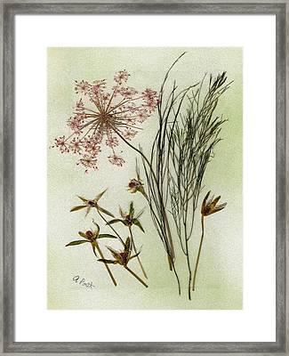 Simple Pleasures Framed Print