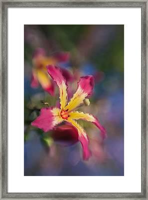 Prettier As You Framed Print