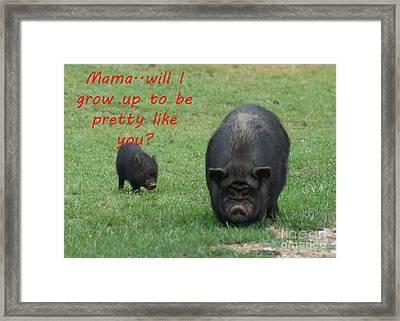 Pretty As A Pig Framed Print by B Wayne Mullins