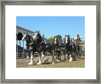 Pretty As They Come Framed Print