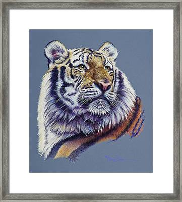 Pretty Boy Siberian Tiger Framed Print