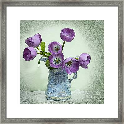 Pretty Faces Framed Print by Betty LaRue