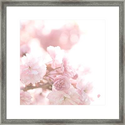 Pretty In Pink - The Confetti Framed Print