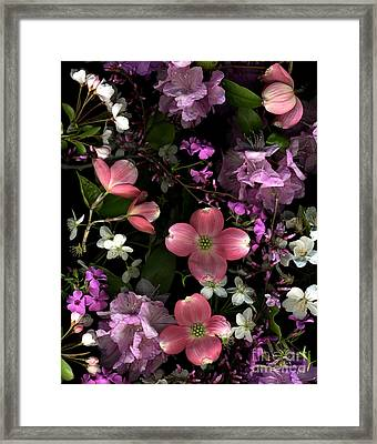 Pretty In Pink Framed Print by Dale Hoopingarner