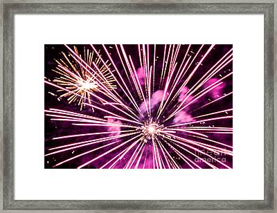 Framed Print featuring the photograph Pretty In Pink by Suzanne Luft
