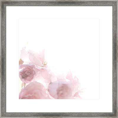 Pretty In Pink - The Dancer Framed Print