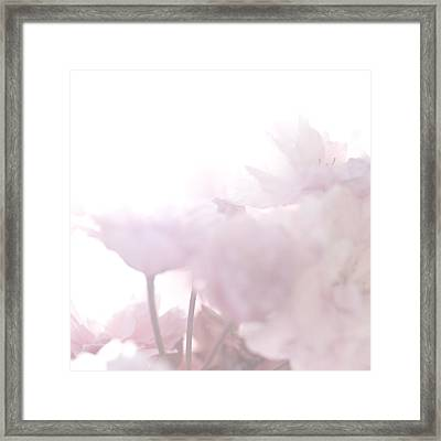 Pretty In Pink - The Whisper Framed Print