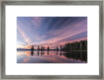 Pretty Is Pink Framed Print by Jon Glaser